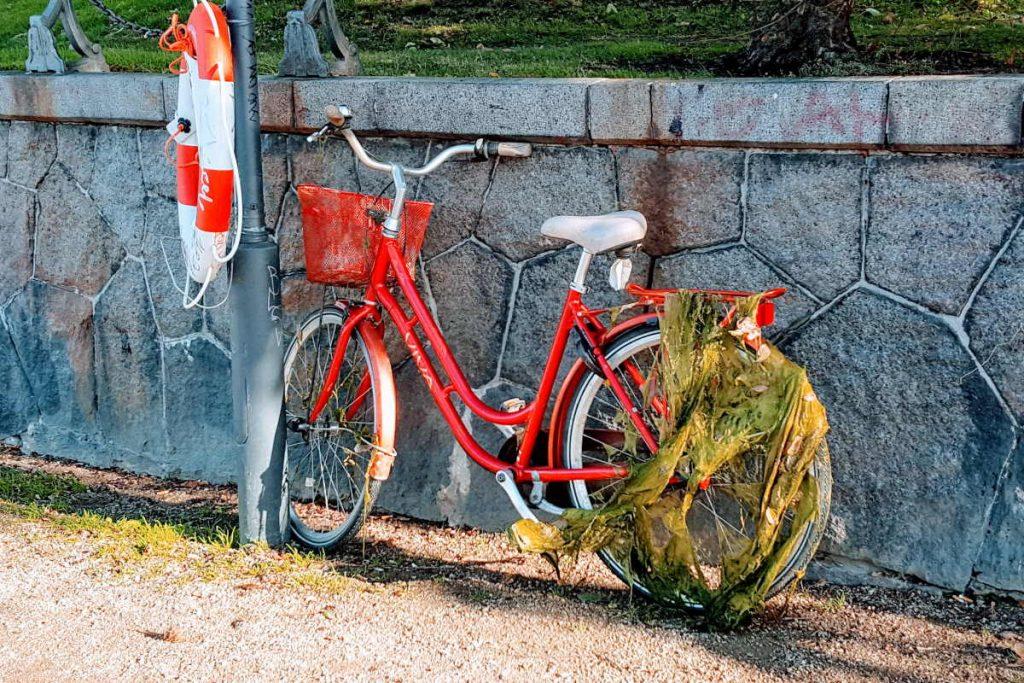 Cosa vedere a Copenaghen le bicicletta recuperate caduta nel fiume con le alghe ancora attaccate
