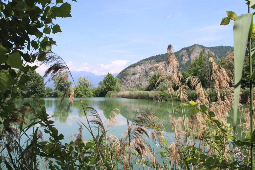Laguna Torbiere del Sebino