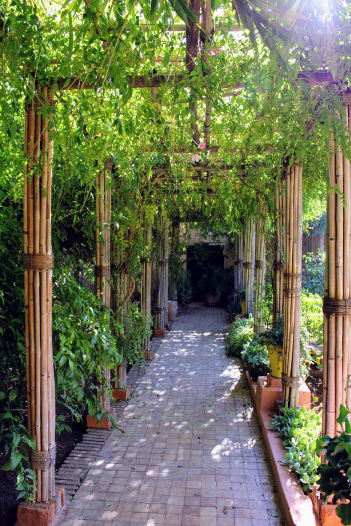 Jardin Majorelle corridoio