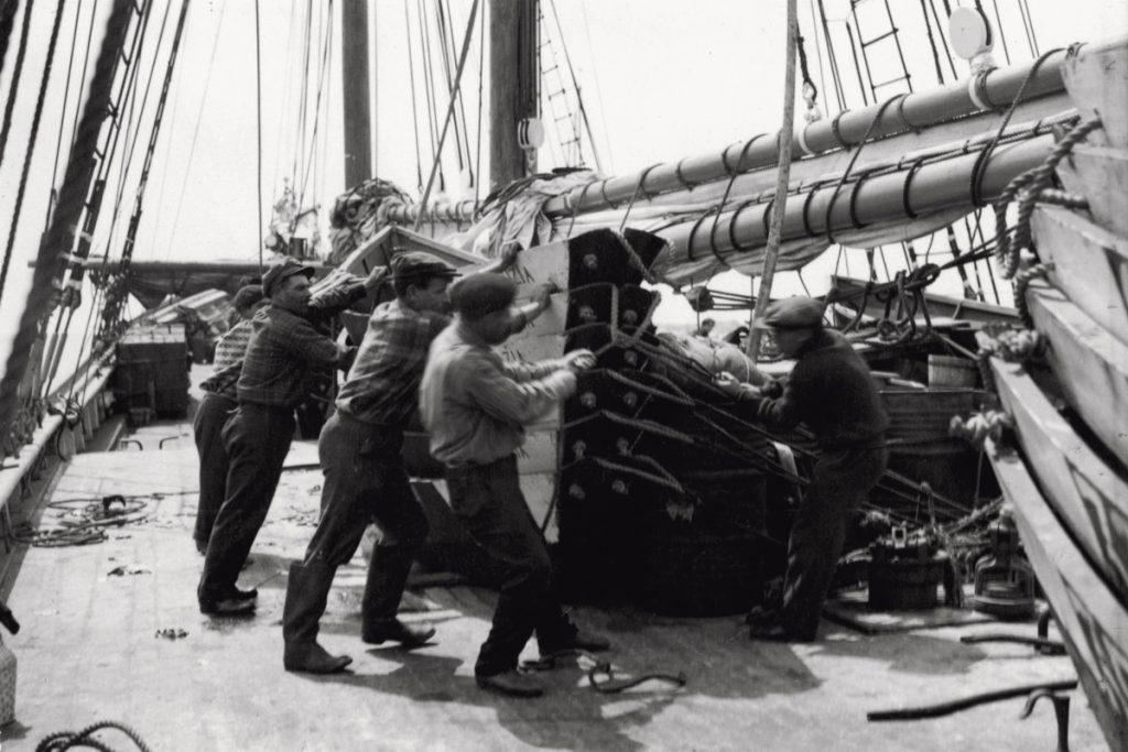 Pescatori di baccalà negli anni '50 storia del baccalà